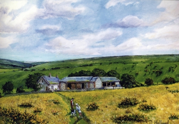 Newmarket Farm by Douglas Holland
