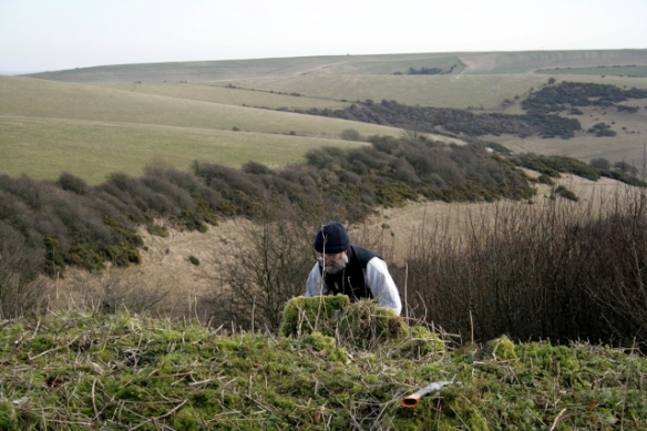 Looking E over the mound of bulldozed rubble at Malcolm Emery and Castle Hill NNR beyond