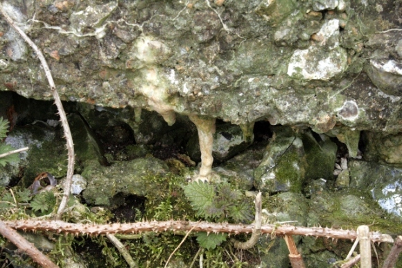 Lime mortar stalactite
