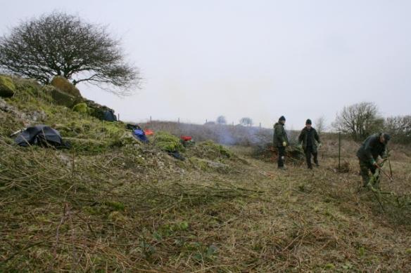 NE corner of site, burning cut scrub