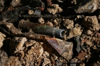 .303 cartridge from under corrugated iron sheet; 16th June 2013.
