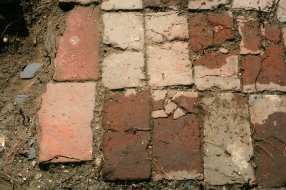 NE corner of paved path