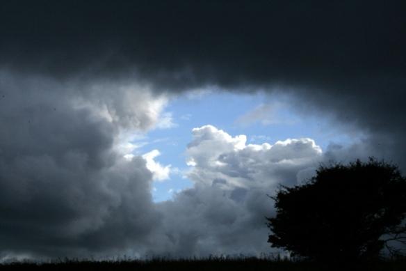 Dramatic sky, looking SW at hawthorn near SW corner of farmyard