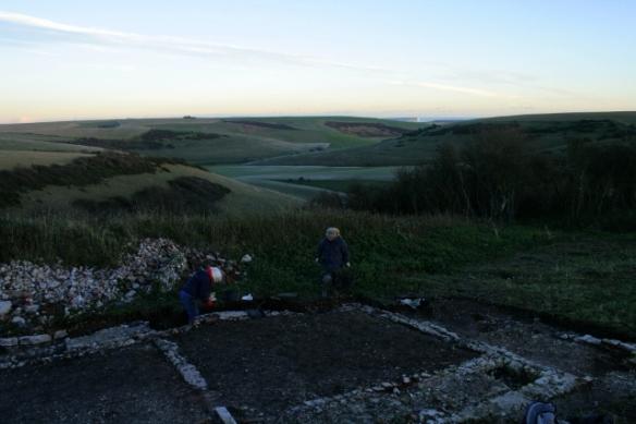 Looking SE across dig site