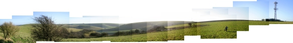 Panorama from S bank of dew pond on Newmarket Hill, looking E to W