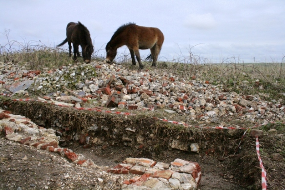 Looking E at Exmoor ponies on demolition rubble mound beyond SE corner of cottage