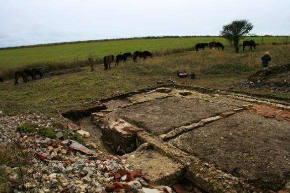 Exmoor ponies visiting dig site