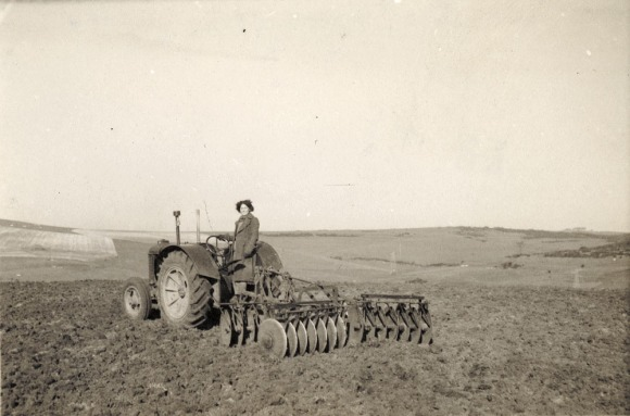 Landgirl during Second World War disk harrowing. Photograph probably taken at Woodingdean[?] by Brighton Parks & Gardens Dept. Image from The Royal Pavilion and Museums, Brighton & Hove.
