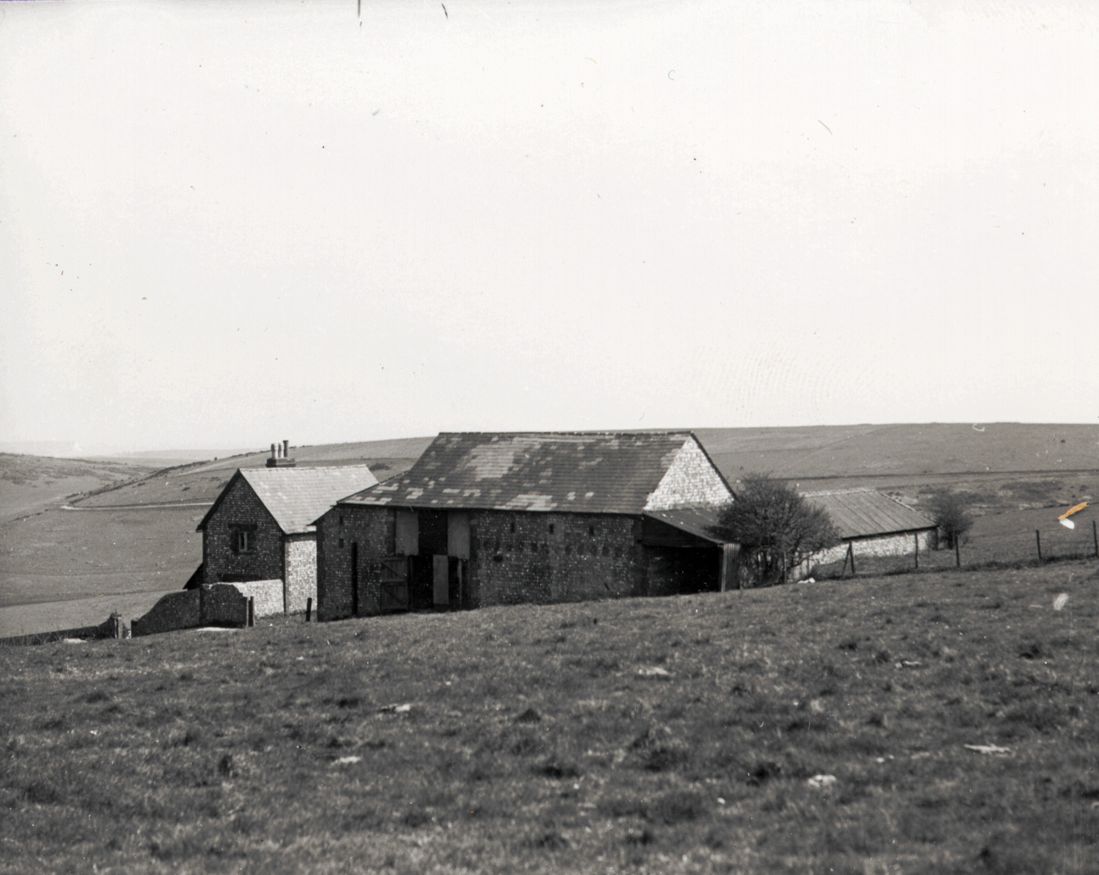 Newmarket Farm photo possibly taken in about 1924. From a collection of photos by Capt. Bertie Hubbard Maclaren. Brighton & Hove Royal Pavilion and Museums, ref. HA930078.